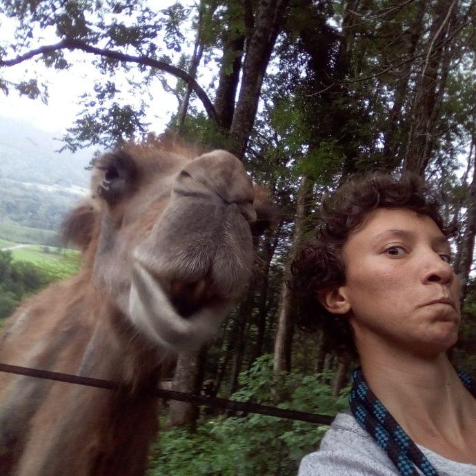 Edmée voyage avec une chamelle et un cheval, elle est actuellement en pologne et nous raconte son histoire sur la radio allo la planete