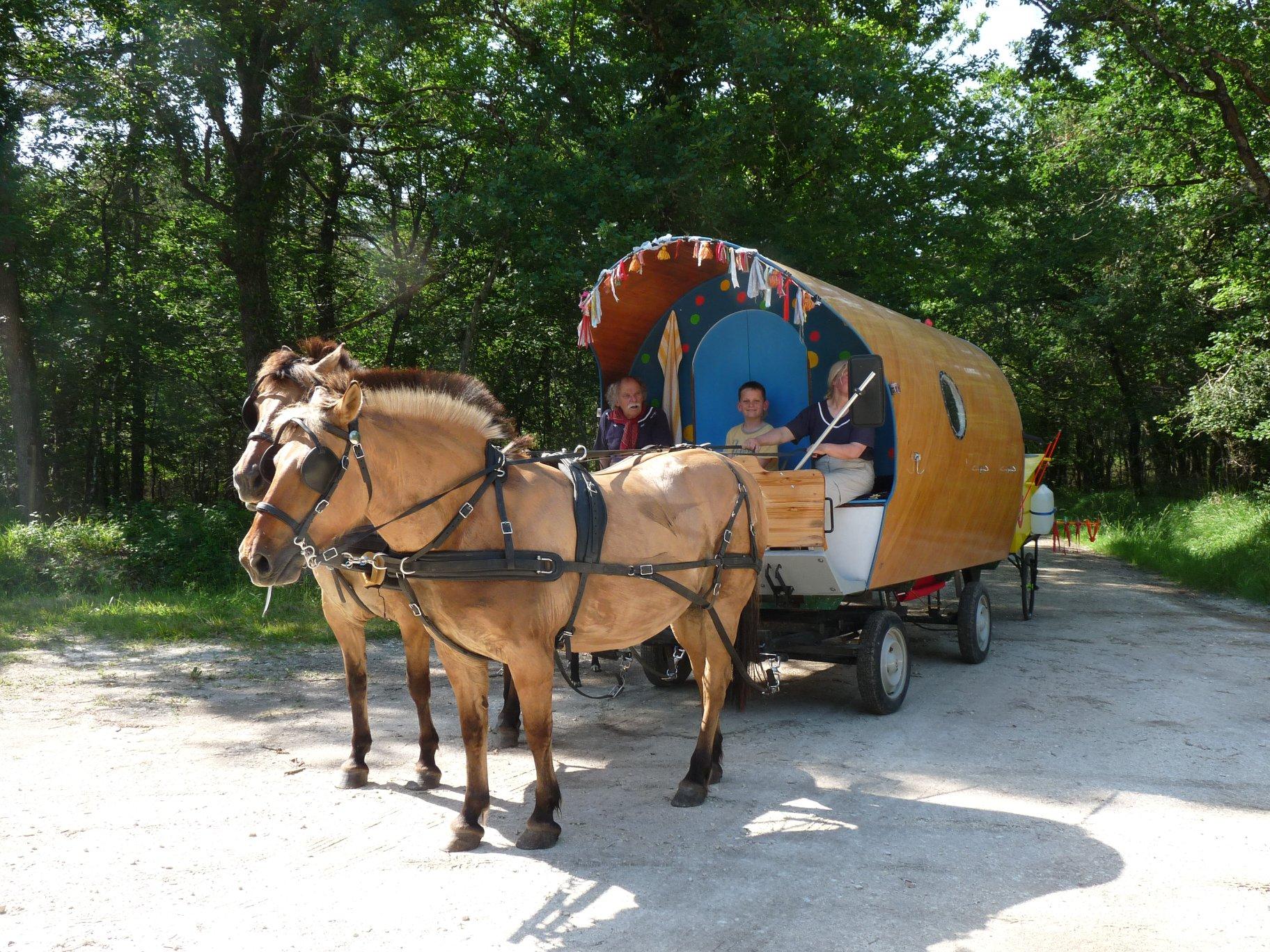 Dans Avec mes Sabots sur la webradio Allô la Planète, Anne et Oswald raconte leur tour des Alpes en roulotte, tractés par deux chevaux,